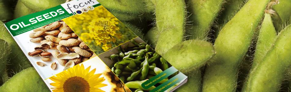 Cover image of Oilseeds Focus Vol 4 No 4
